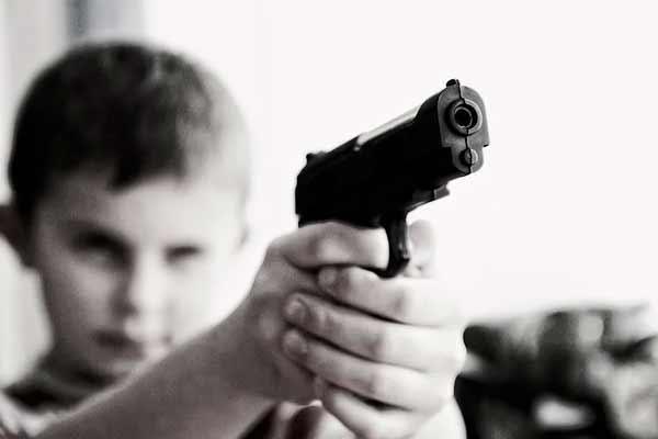 государство гражданское оружие