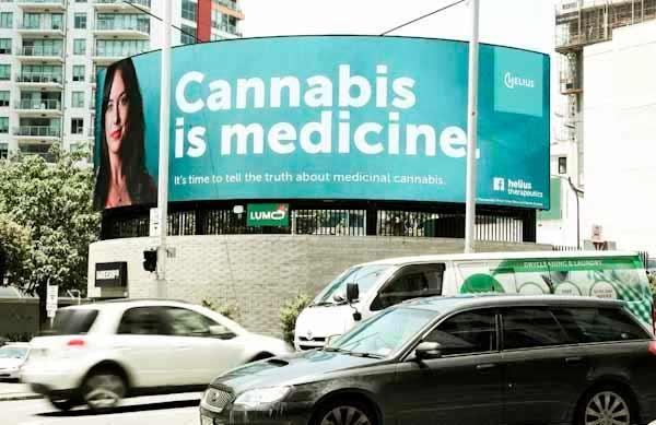 Новая Зеландия легализует марихуану