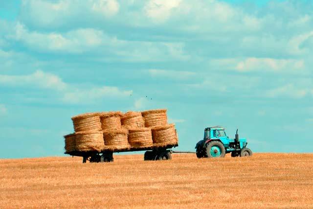 фермерским хозяйствам